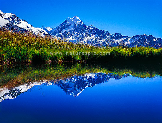 Summit of Mt Cook (3754m) reflected in Sealy Tarns; Sealy Range, Aoraki / Mount Cook National Park, MacKenzie District, Canterbury Region, New Zealand (NZ) stock photo.