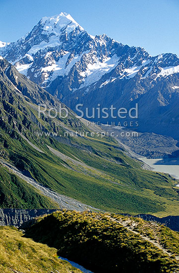 Mount (Mt) Cook / Aoraki(3754m) at head of Hooker Valley viewed from Sealy Tarns. Hooker Glacier right, Aoraki / Mount Cook National Park, MacKenzie District, Canterbury Region, New Zealand (NZ) stock photo.