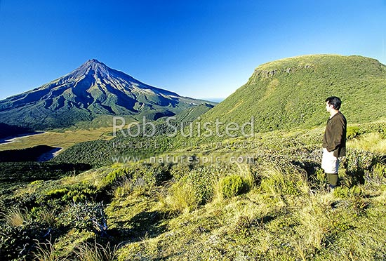 Tramper looking over Ahukawakawa Swamp to Mount (Mt) Taranaki/Egmont (2518m) from the Pouakai Range, Egmont National Park, Taranaki, New Plymouth District, Taranaki Region, New Zealand (NZ) stock photo.