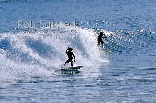 Surfing at Lyall Bay, Wellington, Wellington City District, Wellington Region, New Zealand (NZ) stock photo.