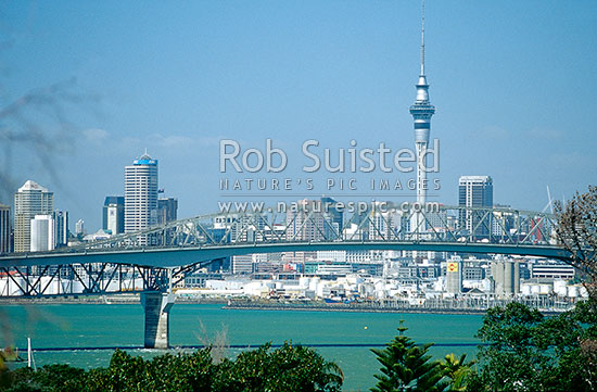 Auckland City, Sky Tower and Harbour Bridge, Auckland City, Auckland City District, Auckland Region, New Zealand (NZ) stock photo.