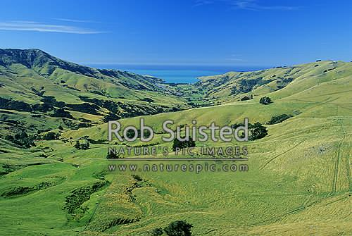 Looking down on Le Bons Bay from the Summit Road, Akaroa, Banks Peninsula District, Canterbury Region, New Zealand (NZ) stock photo.