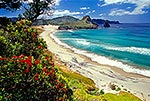 Great Barrier Island, Awana Bay beach