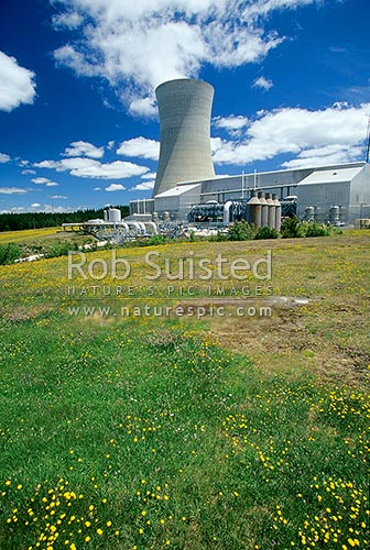 Cooling tower of the Ohaaki Geothermal Power Station, Ohaaki, Taupo District, Waikato Region, New Zealand (NZ) stock photo.