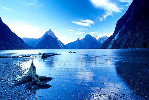 Looking up Milford Sound past Mitre Peak (1683m)-left. Mount (Mt) Pembroke (2000m) in snow - right, Fiordland National Park, Southland District, Southland Region, New Zealand (NZ) stock photo.