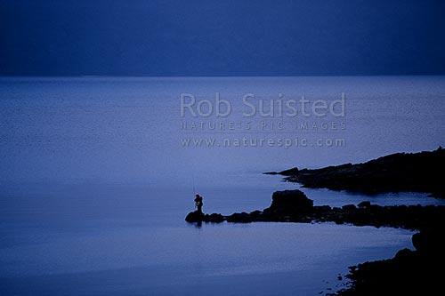 Trout fisherman on shore of Lake Waikaremoana in evening light, Te Urewera National Park, Wairoa District, Hawke's Bay Region, New Zealand (NZ) stock photo.