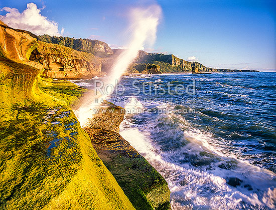 Blow hole on the Punakaiki / Paparoa Coastline, Punakaiki, Buller District, West Coast Region, New Zealand (NZ) stock photo.