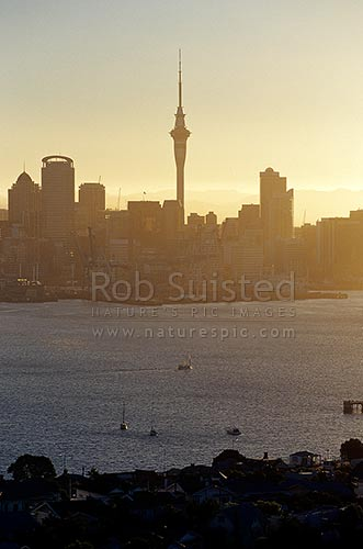 Auckland Skyline and Auckland Sky Tower silhouetted at dusk, Devonport, North Shore City District, Auckland Region, New Zealand (NZ) stock photo.