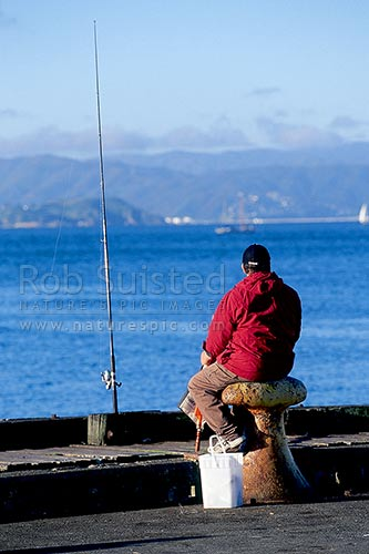 Person fishing off the overseas terminal in Wellington Harbour. Fisherman, Wellington, Wellington City District, Wellington Region, New Zealand (NZ) stock photo.
