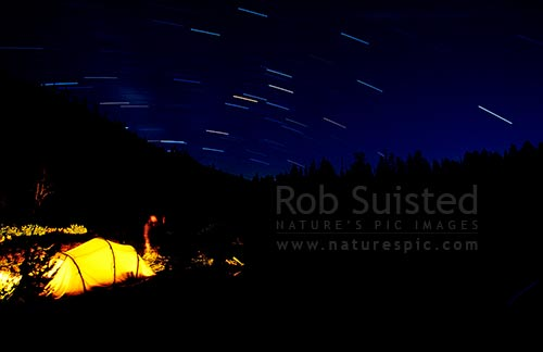 Hiking in Yosemite National Park. Camping at Sunrise Lakes. Time exposure with star trails above, Yosemite National Park, USA, California District, California Region, United States of America stock photo.