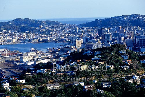 Wellington Harbour, city and CBD, Wellington, Wellington City District, Wellington Region, New Zealand (NZ) stock photo.