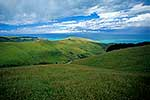 Farmland, Banks Peninsula