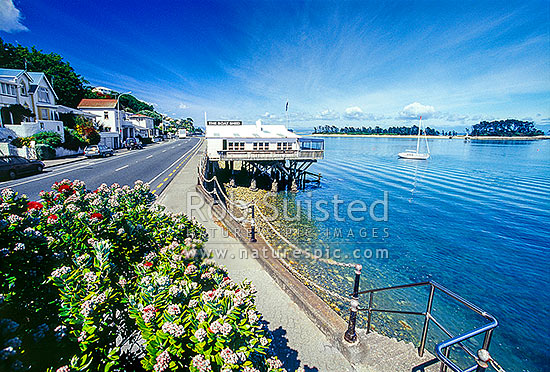 Nelson foreshore along Wakefield Quay near the Port. Haulashore Island beyond a calm harbour, Nelson, Nelson City District, Nelson Region, New Zealand (NZ) stock photo.