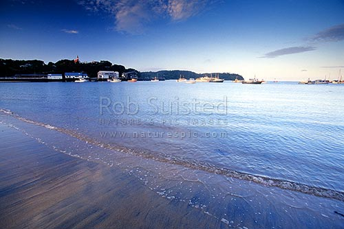 Halfmoon Bay (Oban), Halfmoon Bay, Stewart Island District, Southland Region, New Zealand (NZ) stock photo.