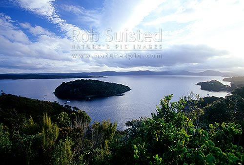 Looking over Iona Island, Paterson Inlet (Whaka A Te Wera), Halfmoon Bay, Stewart Island District, Southland Region, New Zealand (NZ) stock photo.