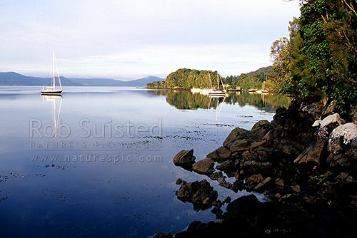 Yacht moored in calm reflective waters of Thule Bay, Paterson inlet (Whaka A Te Wera) at dawn, Halfmoon Bay, Stewart Island District, Southland Region, New Zealand (NZ) stock photo.