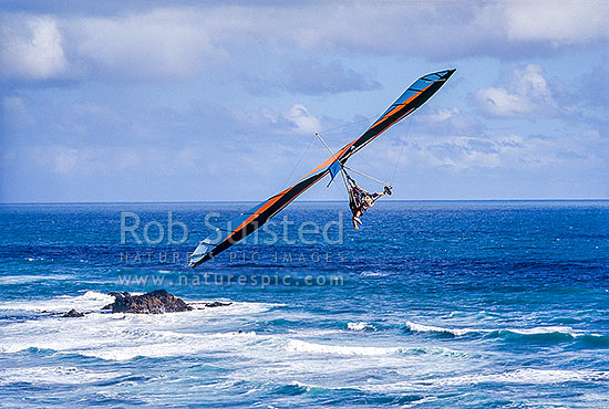 Hang glider over sea, Muriwai, Auckland, Rodney District, Auckland Region, New Zealand (NZ) stock photo.