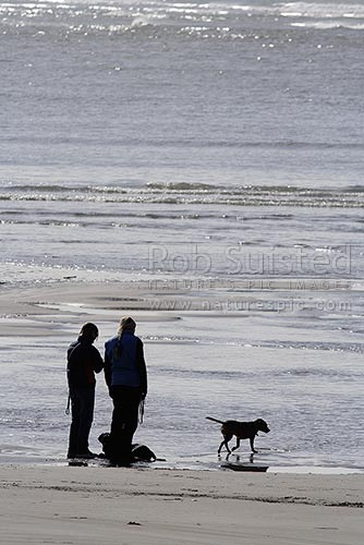 Two people walking a couple of dogs on Sumner Beach, Heathcote Estuary, Sumner beach, New Zealand (NZ) stock photo.