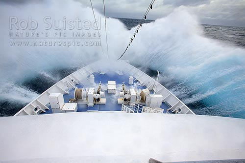 Bow of expedition ship MV Orion handling very heavy seas in the Southern Ocean. Part 3 of 4, Southern Ocean, NZ Sub Antarctic District, NZ Sub Antarctic Region, New Zealand (NZ) stock photo.