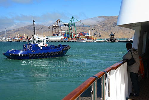 Harbour tugboat pulling ship from wharf, Lyttelton Harbour, Lyttelton, Banks Peninsula District, Canterbury Region, New Zealand (NZ) stock photo.