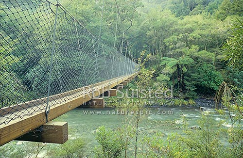 Mitre flats swing bridge over the Waingawa river, Tararua Forest Park, Masterton District, Wellington Region, New Zealand (NZ) stock photo.