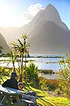 Milford Sound travellers