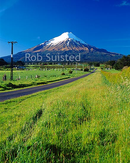 Mount (Mt) Egmont / Mount (Mt) Taranaki above lush grass paddocks, country road and power lines, Eltham, South Taranaki District, Taranaki Region, New Zealand (NZ) stock photo.