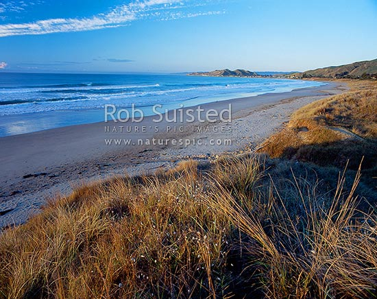 Early morning colours at Wainui Beach, north of Gisborne, Gisborne, Gisborne District, Gisborne Region, New Zealand (NZ) stock photo.