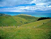 Banks Peninsula farmland