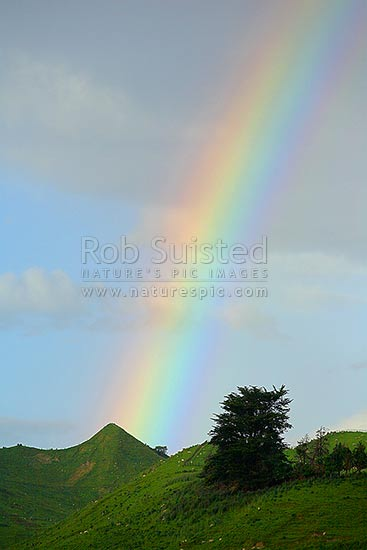 Rainbow over farm hill country, Taihape, Rangitikei District, New Zealand (NZ) stock photo.