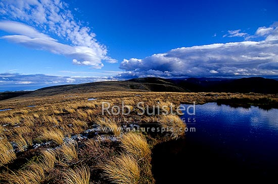 Clearing storm reflected in alpine tarn on tussock tops of the Main Range, Ruahine Forest Park, Rangitikei District, Manawatu-Wanganui Region, New Zealand (NZ) stock photo.