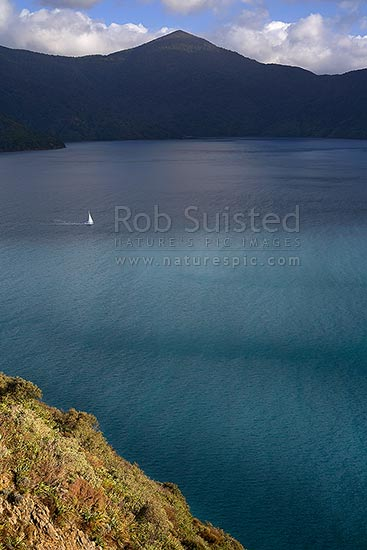 A lone yacht departing a moody Queen Charlotte Sound, past Long Island, Marlborough Sounds, Marlborough District, Marlborough Region, New Zealand (NZ) stock photo.