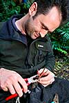 Conservation worker banding Weka
