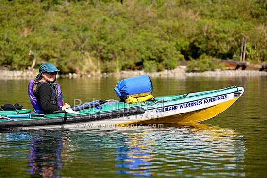 Tourist visitor photographing from a sea kayak in Doubtful Sound, Doubtful Sound, Fiordland, Southland District, Southland Region, New Zealand (NZ) stock photo.