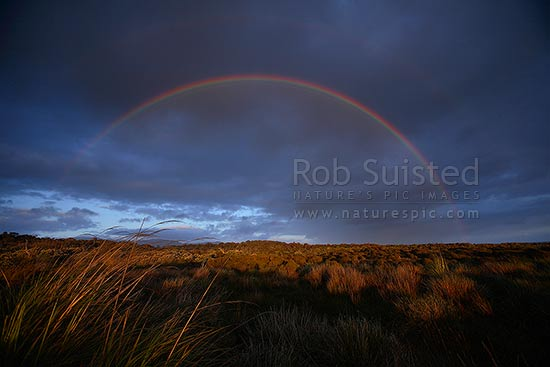 Full arch rainbow over coastal land at the Wairaurahiri River Mouth on a moody evening. Fiordland coast, Waitutu Forest, Fiordland, Southland District, Southland Region, New Zealand (NZ) stock photo.