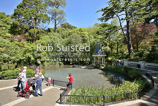 People enjoying the sun and feeding the ducks at the Duck Pond in the Wellington Botanical Gardens, Wellington, Wellington City District, Wellington Region, New Zealand (NZ) stock photo.