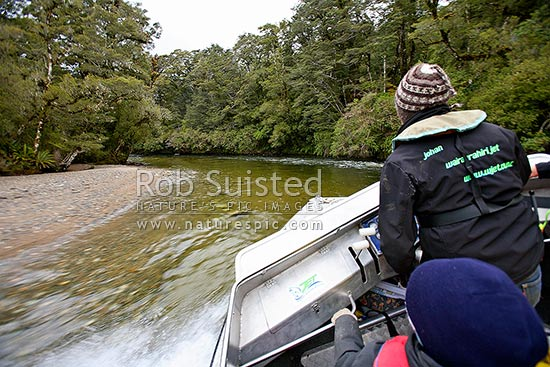 Johan Groters driving tourist visitors in the W-Jet boat through rapids on the Wairaurahiri River, Waitutu Forest, Fiordland, Southland District, Southland Region, New Zealand (NZ) stock photo.