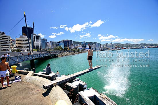 Wellington Waterfront Promenade, with swimmers about to dive off plank into Wellington Harbour. City high-rise buildings in background, Wellington, Wellington City District, Wellington Region, New Zealand (NZ) stock photo.