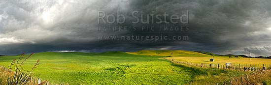 Dark moody stormy skies brewing above lush summer grass farmland lit by evening light, in Central Hawke's Bay. Panoramic view, Dannevirke, Tararua District, Manawatu-Wanganui Region, New Zealand (NZ) stock photo.