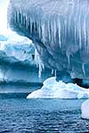 Icicles hanging from icebergs