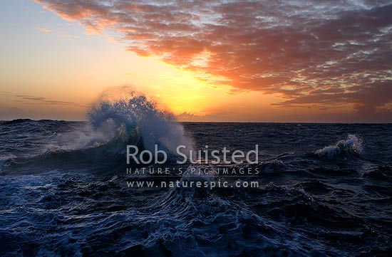 Southern ocean wave crashing over sea swell in front of a beautiful sunset. 58 degrees South, Southern Ocean, Antarctica stock photo.