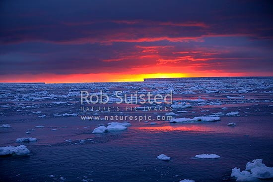 Antarctic sunset over tabular icebergs, pack ice, and brash ice, Southern Ocean, Antarctica stock photo.