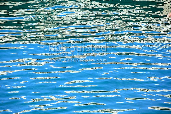 Abstract light patterns on surface of calm sea and small waves. Coloured ripples, New Zealand (NZ) stock photo.