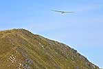 Glider over Mt Hector, Tararuas