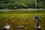 Fiordland trout fishing