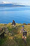 Mountain bikes above Wellington