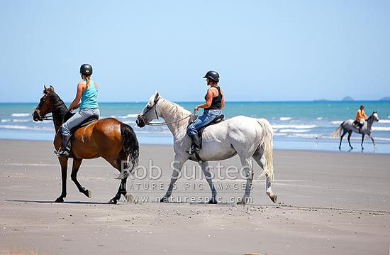 Two women riding horses on beach with sea and horse rider behind, Peka Peka Beach, Kapiti Coast District, Wellington Region, New Zealand (NZ) stock photo.