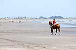 Horse riding on beach in summer