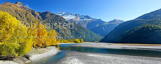 Looking up Matukituki River East Branch, flowing under Mt Avalanche (2606m), and past Cameron Flat, with autumn coloured trees. Panorama, Mount Aspiring National Park, Queenstown Lakes District, Otago Region, New Zealand (NZ) stock photo.