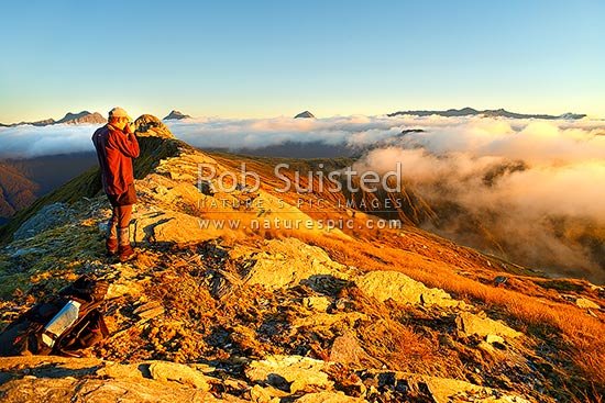 Tramper photographing the alpine sunset over the Thomas Range, with sea mist rolling in. Mount Trig 'N' Tarn (1474m) left. Thomas Valley in cloud at right, Haast, Westland District, West Coast Region, New Zealand (NZ) stock photo.